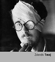 Zdenk Tmej