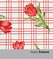 Dušan Šimánek
