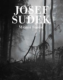 Mionší Forest